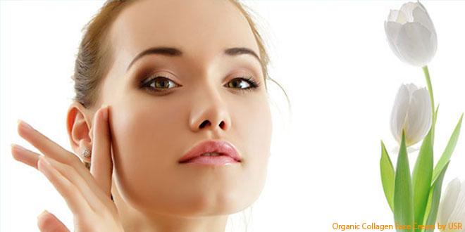 best-organic-collagen-face-cream